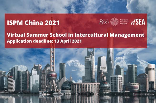 Collegamento a Virtual Summer School in Intercultural Management